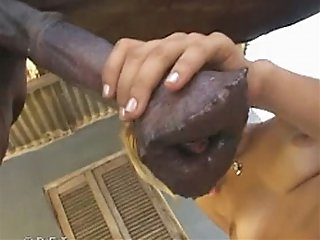 Lovely animal hooker sucking a nice hard horsecock